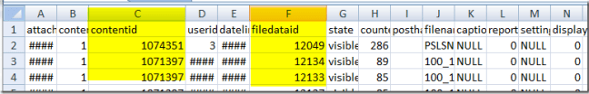 excel-output