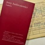 """Variola vera (Jerzy Ambroziewicz, """"Zaraza"""")"""