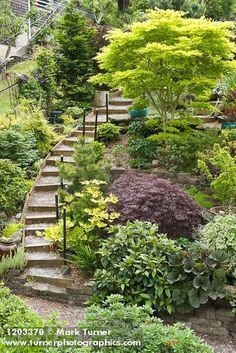 21 Landscaping Ideas for Slopes - Slight, Moderate and Steep on Steep Sloping Garden Ideas  id=81000