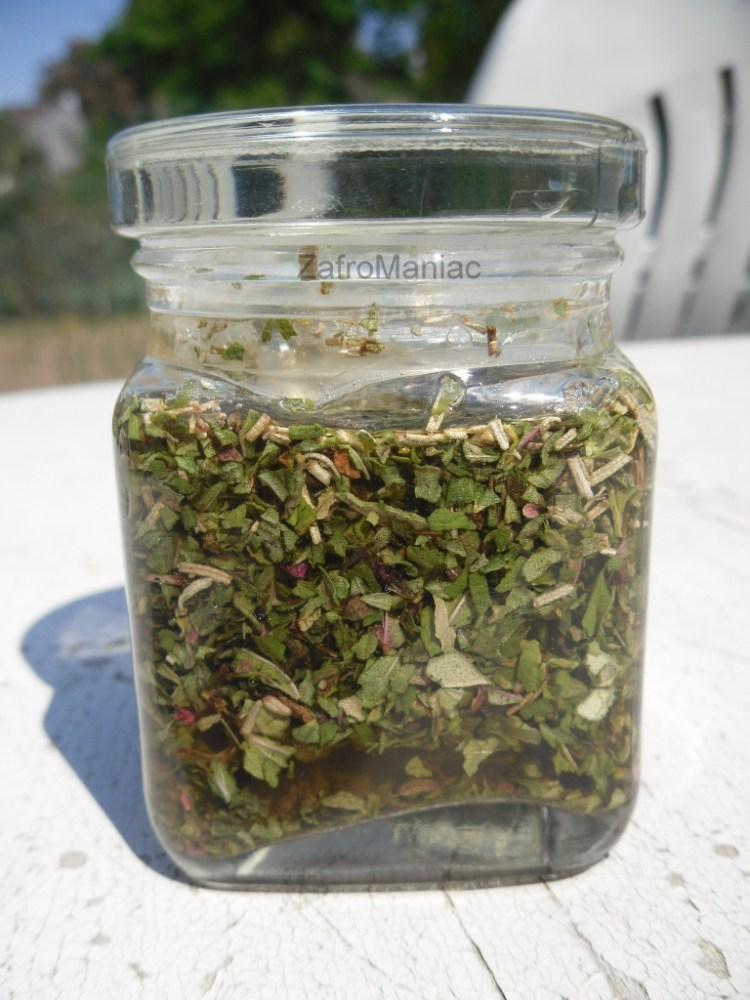 Faire macérer des plantes...dans du vinaigre?? (4/5)