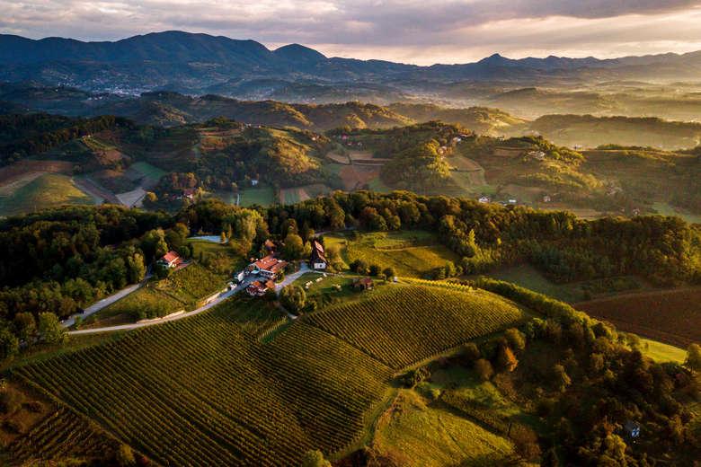 Zagorje rolling hills Vuglec vinery