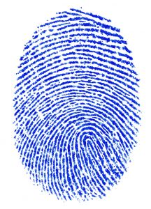 Blue finger print by Davide Guglielmo, Albignasego, PD, Italy http://www.broken-arts.com 227873_fingerprint