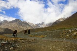 Kazakh of the Tian Shan