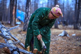 Tsataan lady chopping wood for the fire