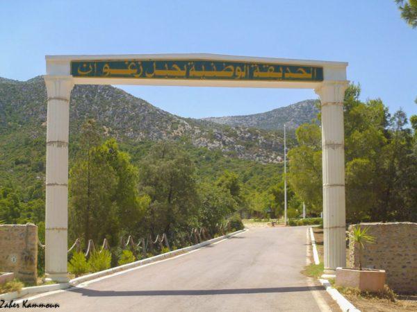 Parc National Djebel Zaghouan الحديقة الوطنية جبل زغوان