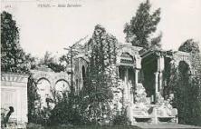 Midha Belvédère (9)