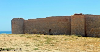 fort younga قصر يونقا