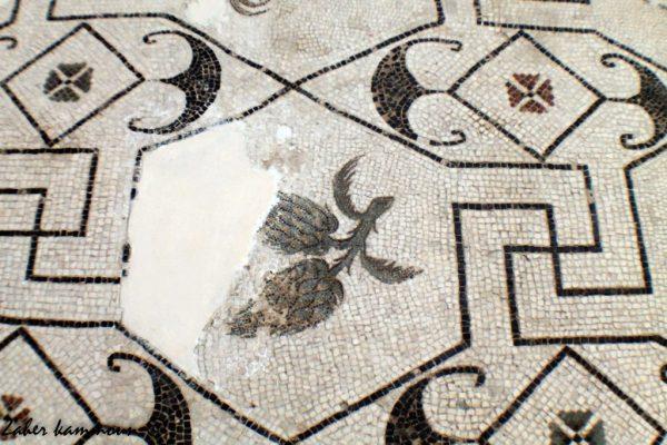 artichaut-mosaique-romaine-3