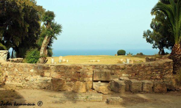 basilique-saint-cyprien-3