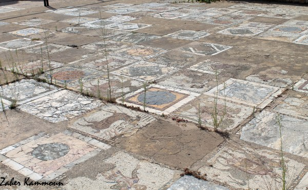 Maison de la volière Carthage