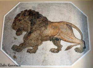 متحف سلقطة Musée Salakta Salcta