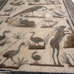 Musée Makthar متحف مكثر