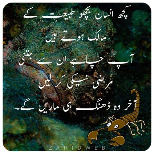 Selfish Peoples Quotes in Urdu