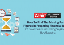 Report of Small Business Useing Single-Entry Bookeping