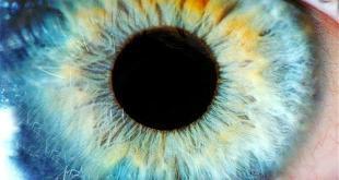 منوع - العين والوهم