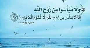بطاقات الصباح - ولا تيأسوا من روح الله