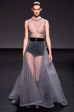 Christian Dior Fall 2013 Couture - see through dress