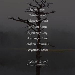 Read more about the article Forgotten bones