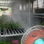 溫室降溫設備