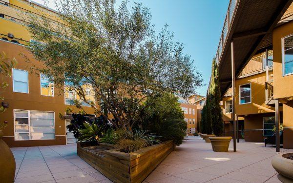 Courtyard Apartments - Garden Style Apartment Types