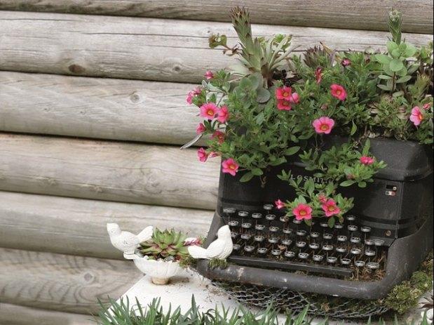 саксия от пишеща машина