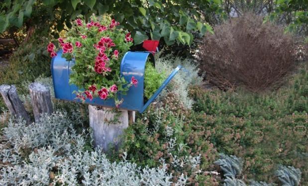 пощенска кутия с цветя
