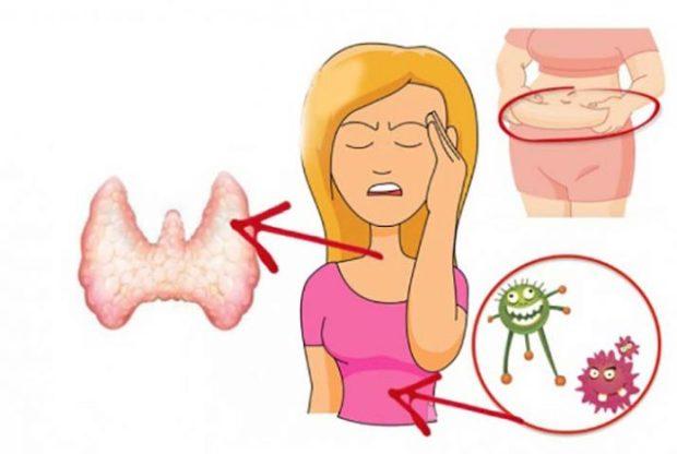 дисфункция на щитовидната жлеза