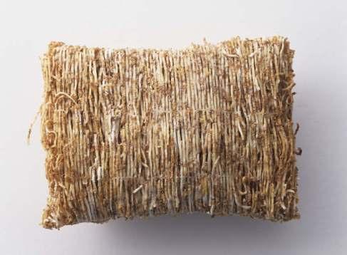 shredded-wheat