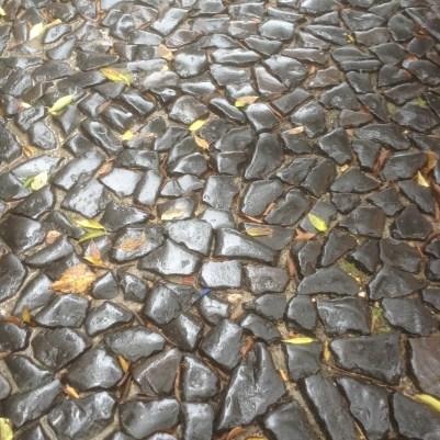Le pavé sous la pluie à Lisbonne