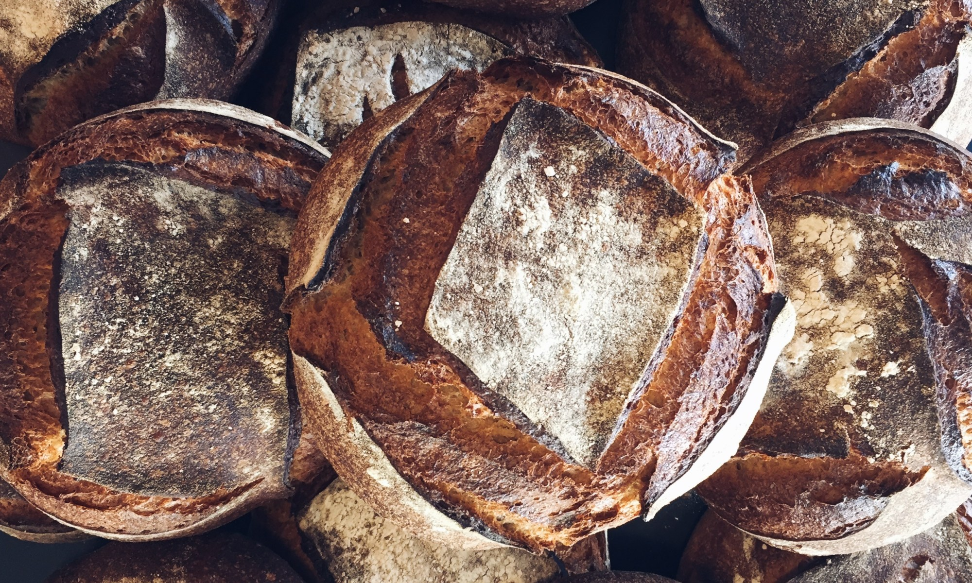 Sourdough Whole Wheat