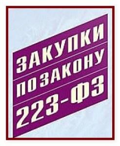 Отчетность по 223-ФЗ