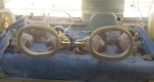 Quadruplets have been delivered to a mother of three in Kitwe