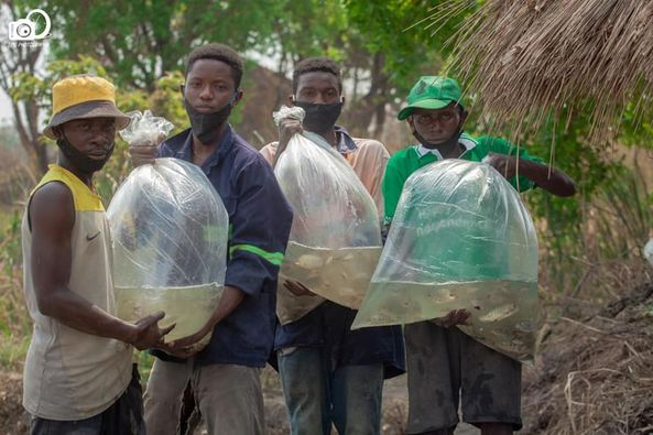 Musukwa has donated 5,000 fingerlings to youths in Chilambwe