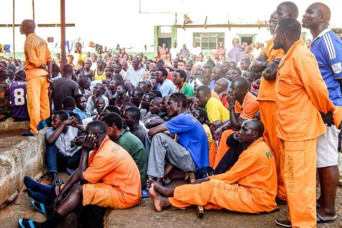 ECZ vows to ensure all prisoners get to vote