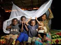 Govt steps up fight against Malaria