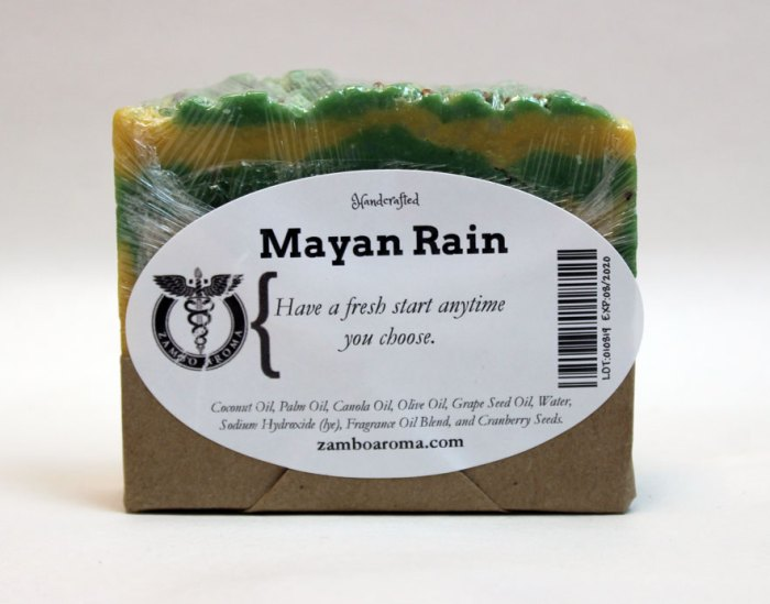 mayan rain