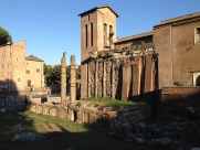 Roman Ruins Rome Italy (3)