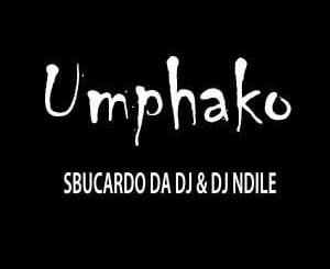 Sbucardo Da DJ & Dj Ndile – Umphako, Sbucardo Da DJ, Dj Ndile, Umphako, mp3, download, mp3 download, cdq, 320kbps, audiomack, dopefile, datafilehost, toxicwap, fakaza, mp3goo,