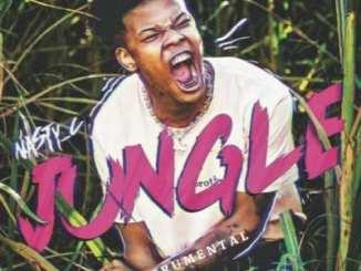 Nasty C, Jungle Lyrics, Jungle, Lyrics, mp3, download, datafilehost, toxicwap, fakaza
