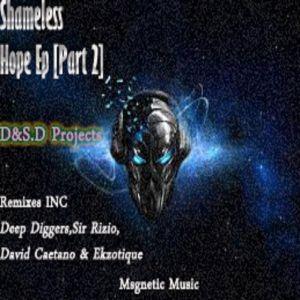 D&S.D Projects – Shameless Hope (Sir Rizio Remix).mp3