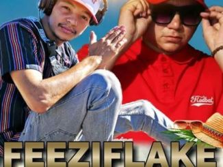 FeeziFlake, ChapterFix 3.1 Live at ClubHaze 12.01.2019 (final set), mp3, download, datafilehost, fakaza, DJ Mix