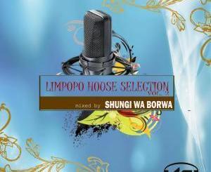 Shungi Wa Borwa, DJ Native SA, Limpopo House Selection, Vol. 2, download ,zip, zippyshare, fakaza, EP, datafilehost, album, Afro House, Afro House 2019, Afro House Mix, Afro House Music, Afro Tech, House Music