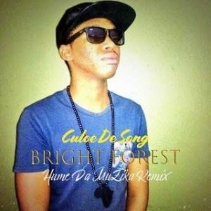 Culoe De Song, Bright Forest, Hume Da Muzika Remix, mp3, download, datafilehost, fakaza, Afro House, Afro House 2019, Afro House Mix, Afro House Music, Afro Tech, House Music