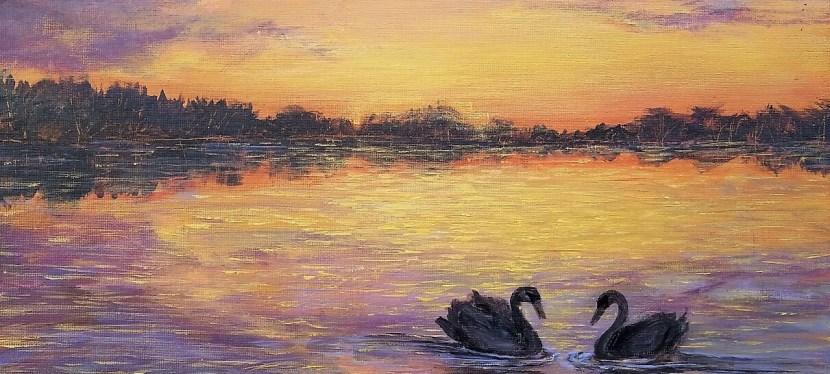 Acrylic Swan Sun Down