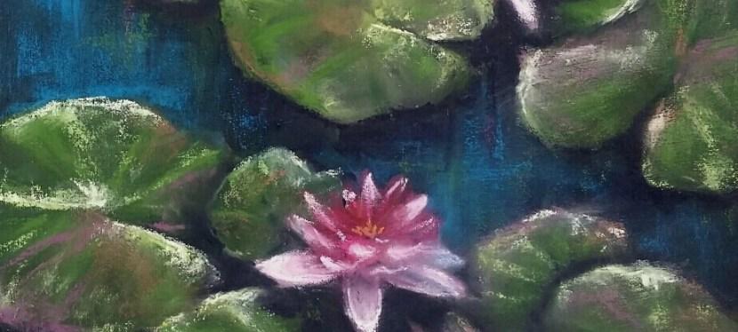 Pastel Waterlily