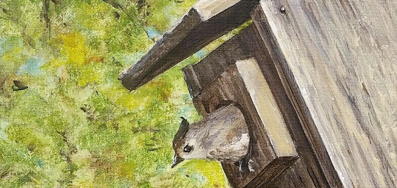 Acrylic Titmouse in the Birdhouse
