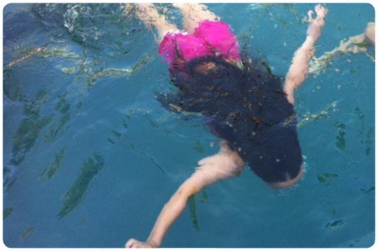 nadar.jpg.pagespeed.ce.OxyqDuD1Mp
