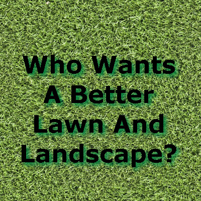 lawn and landscape