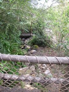 pathway in tom sawyers island