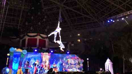 Gaylord Palms ICE Cirque Dreams